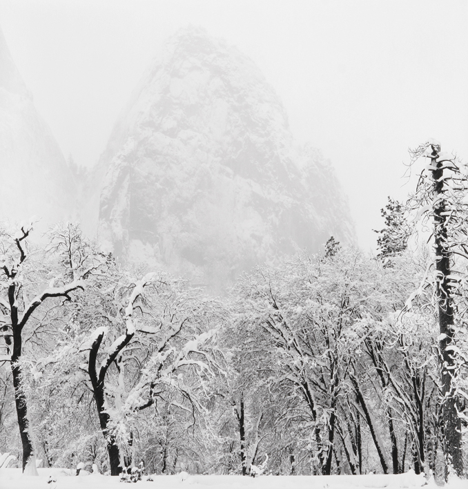 Snow Storm - El Cap Meadow, Yosemite National Park, CA, 2001