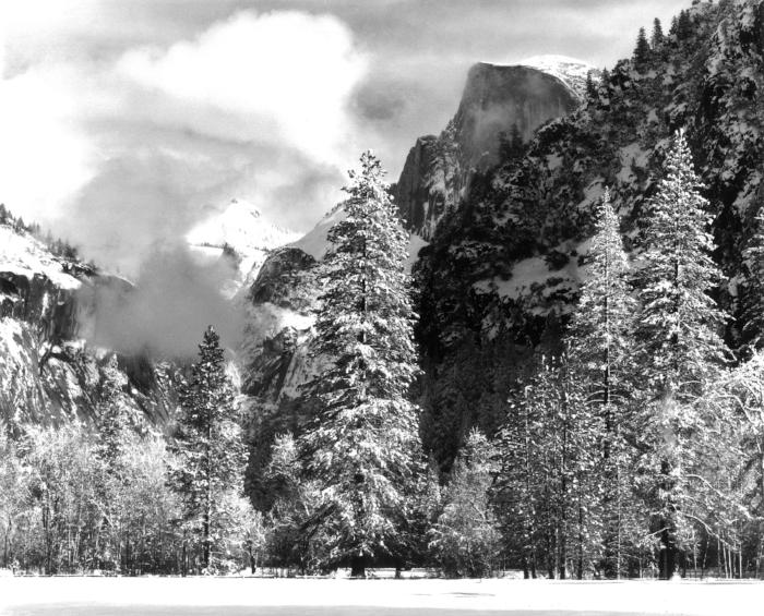 Winter Snow, Yosemite National Park, CA, 2010