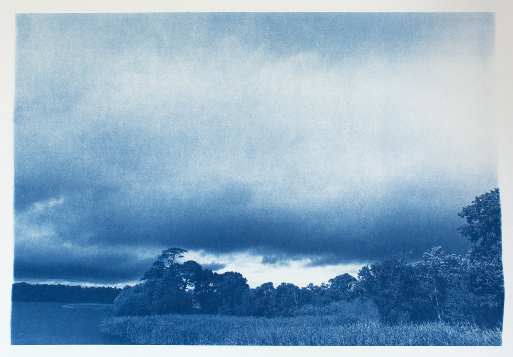 "Lot 72 Sue Abramson, Pittsburgh, PA    On the Edge of Killarney's Lower Lake, Killarney National Park, Ireland , Cyanotype, 2016/2017, 28"" x 22"" Signed, verso Donated by the artist AP $800 - 1,500   sueabramson.com"