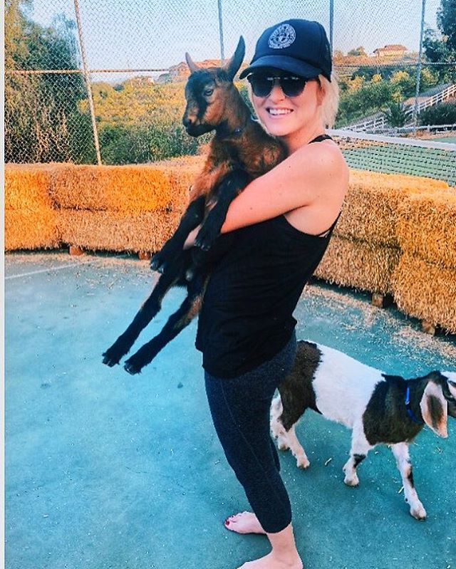 #goatyoga seems to be the new 'fitness' trend. I use the word fitness lightly because really, we're here for goats. Find out where you can experience this fun new phenomenon by checking out my experience, #ontheblog now! And no, I'm not KIDding 🐐🐐🐐🐐 . . . . . . . . . . . . . . . . . . . #sandiego #sandiegoblogger #fitnessmotivation #bloggerbabe #encinitas #exploremore #ilovetravel #doyoutravel  #wander #adventure #adventureseeker #adventurethatislife #worldwonder #vacation #adventure_time #getaway #vacationlife #writetotravel #travelingram #tourism #worldplaces #femmetravel #lifewelltraveled #womenwhotravel #widenyourworld #travelblogger