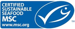MSC Logo- Horizontal.jpg