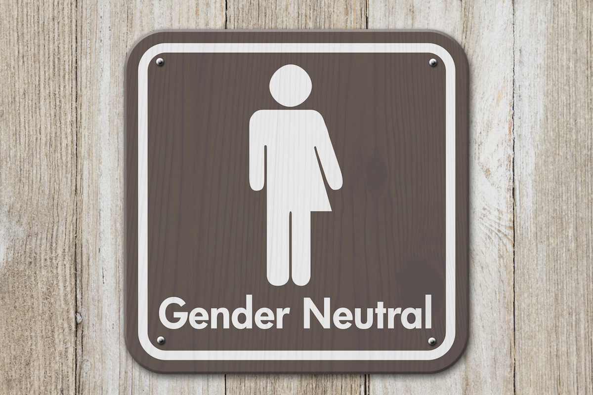 Using Gender–Neutral Pronouns in Academic Writing