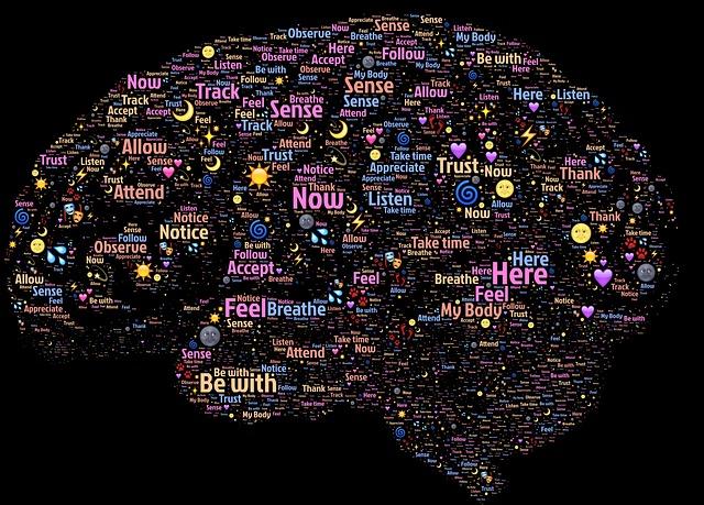 brain-998996_640.jpg
