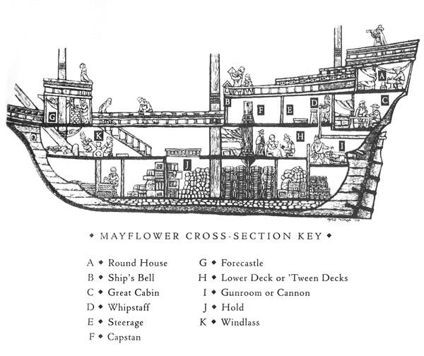 Mayflower-CrossSection.jpeg