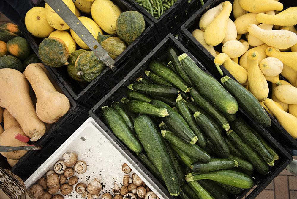 Sarasota Farmers Market veggies