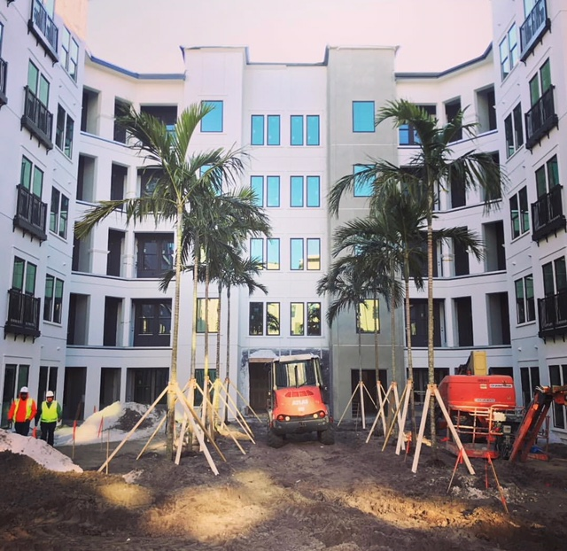 Copy of Arcos-Sarasota_courtyard-palms