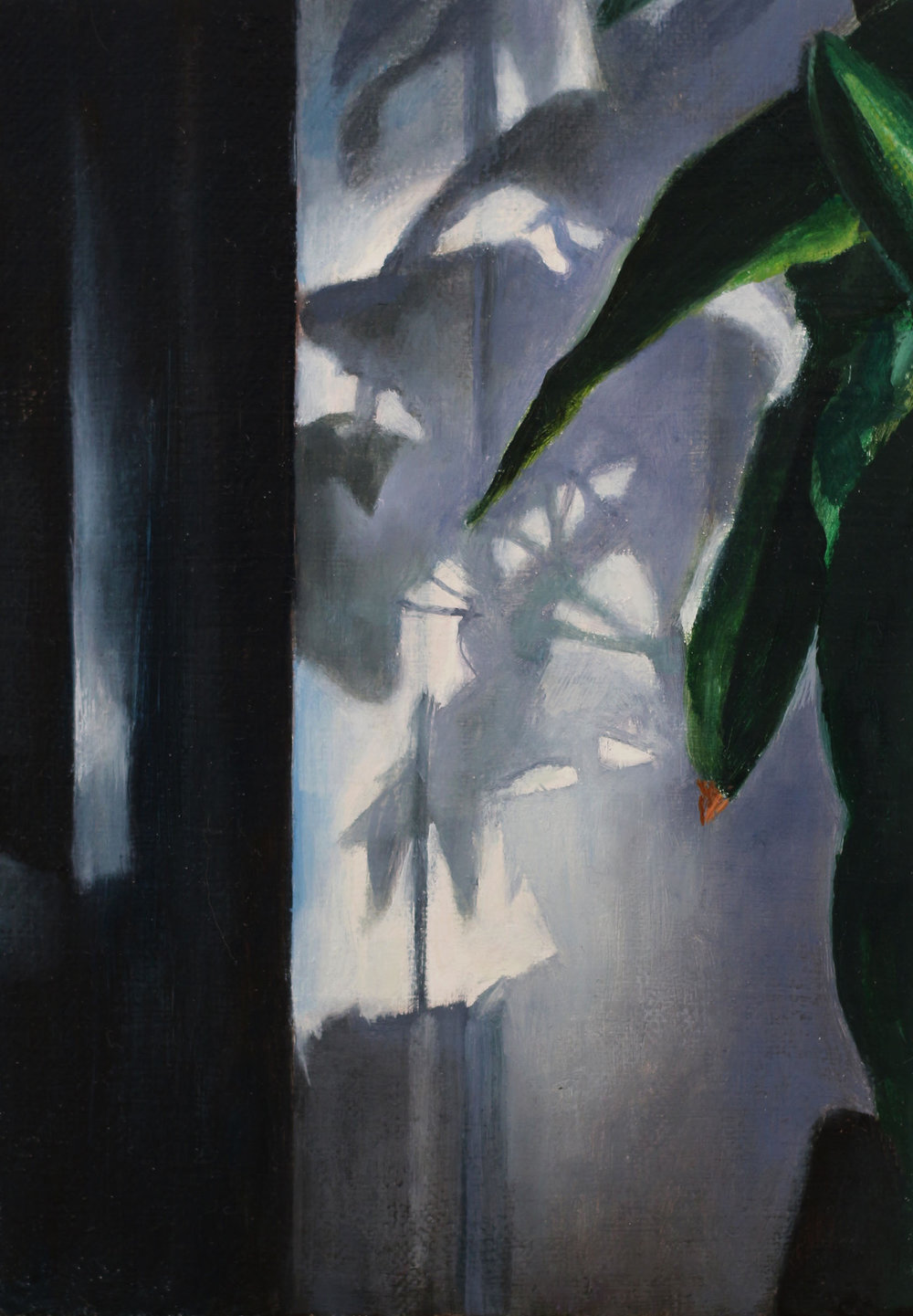 Plant and Shadow   2017  Oil on linen  7 x 5 inches