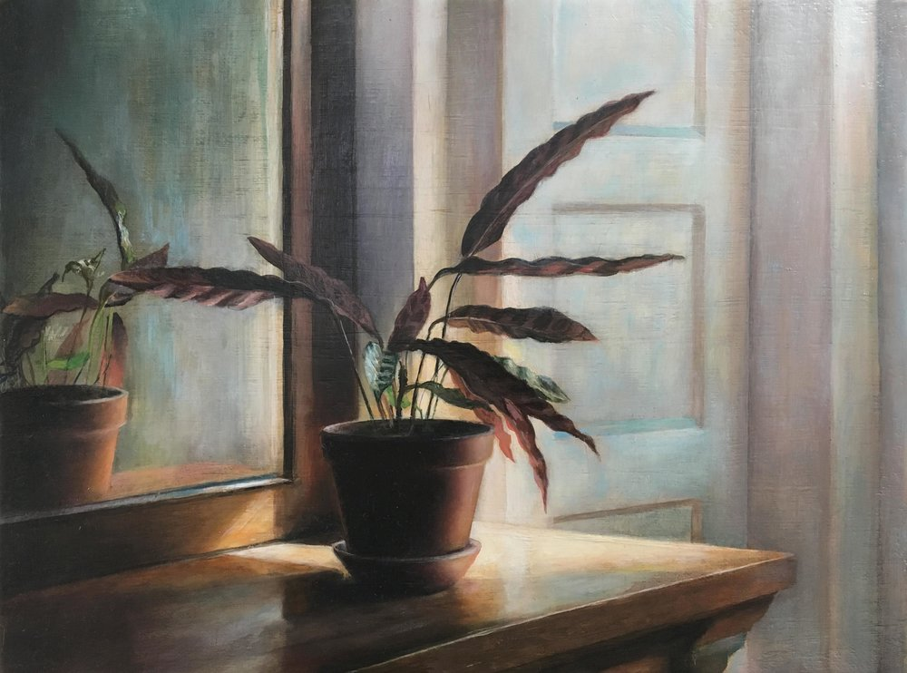 Rattlesnake Plant   2017  Oil on linen  9 x 12 inches