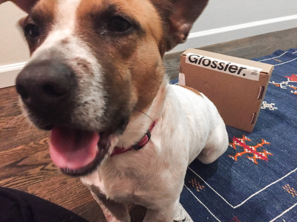 Even Izzy gets excited about a Glossier delivery!
