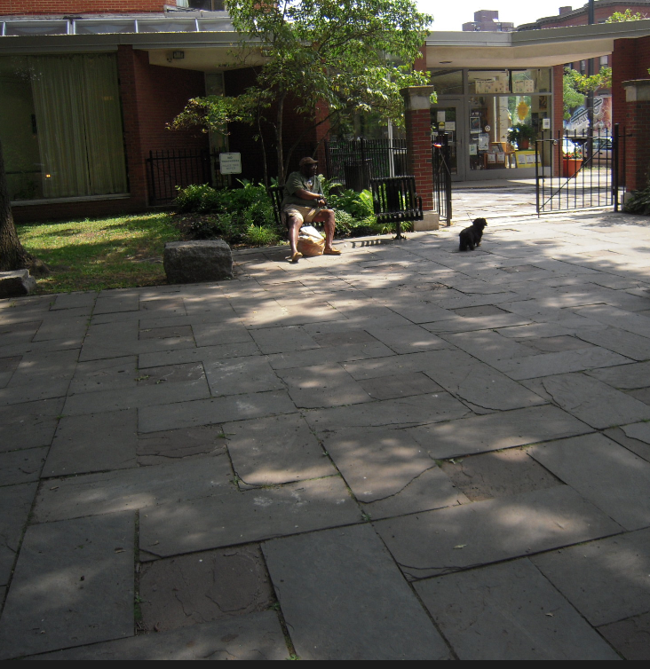 The broken pavement inside Library Park that will NOT be replaced as part of the repair project