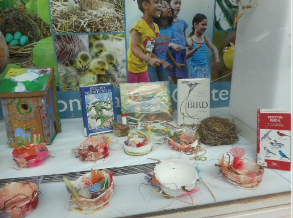 Urban birding display with nests made by birds and by students at the Children's Art Centre