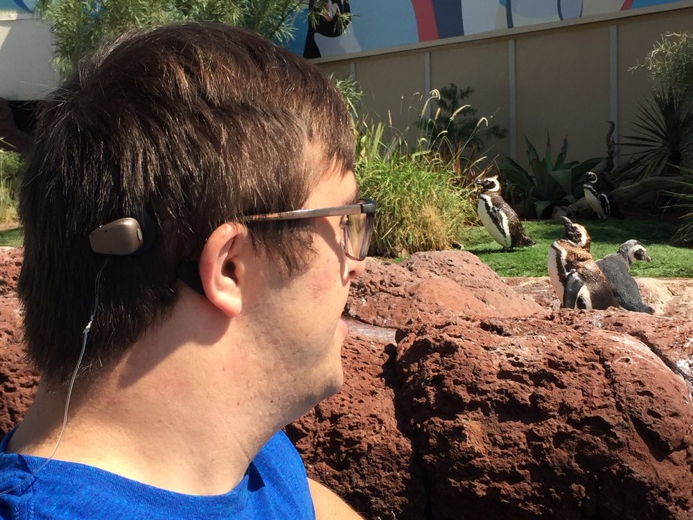 Sean enjoying the sights and sounds of penguins at the zoo. Photo by the McElwee family.