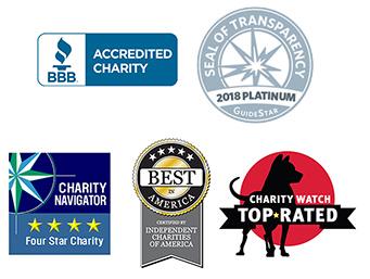 Charity Logos 2018.jpg