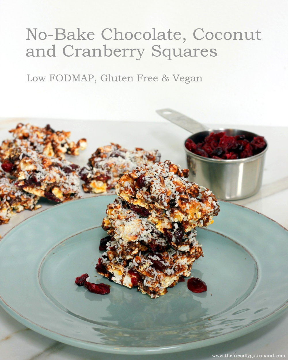 no-bake-chocolate-coconut-cranberry-squares-low-fodmap-friendly-gluten-free-vegan