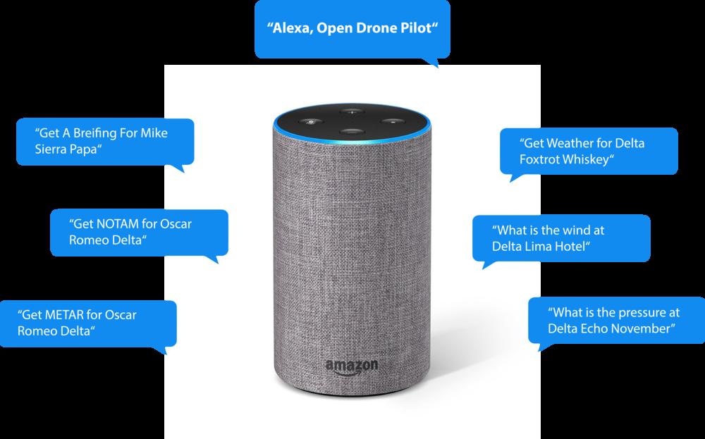 EASE Drones Alexa Skill.png