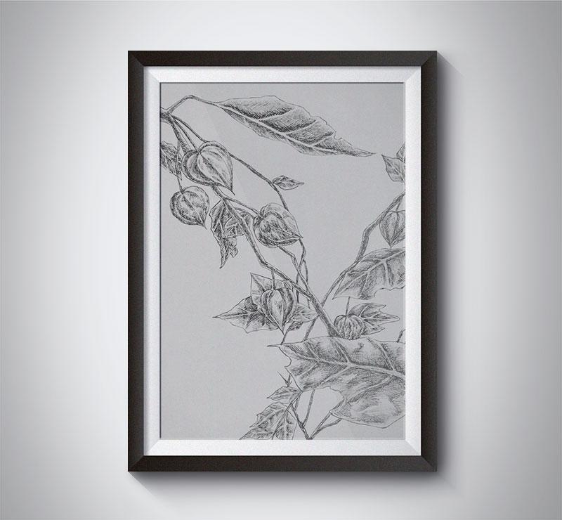 Chinese-Lantern-Pen-Sketches.jpg