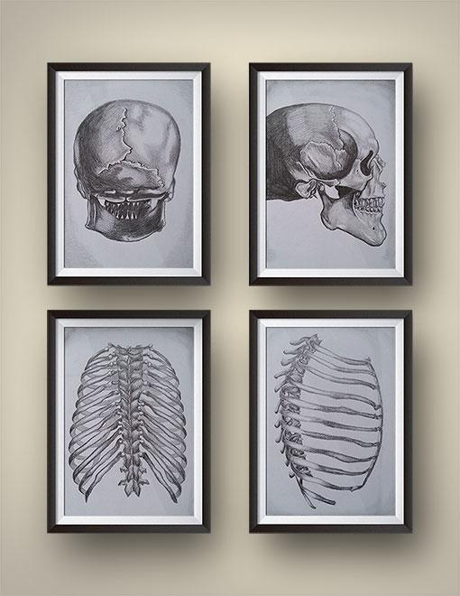 Skeleton-Sketches.jpg