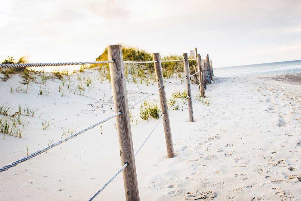 Greys-Beach-2_WEB.jpg