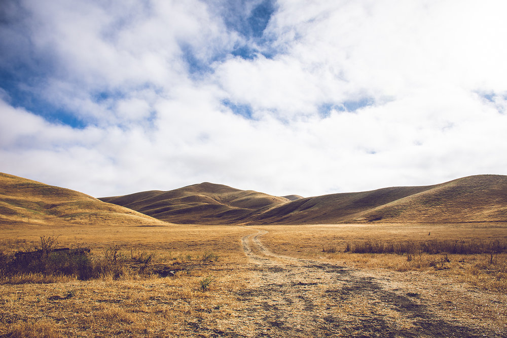 California Landscape 3_WEB.jpg