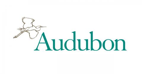 Audubon-480x250.png
