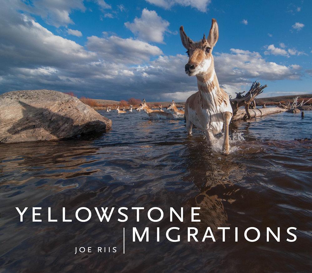 YellowstoneMigrations_Final_WEB.jpg