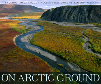 On-Arctic-Ground_350x292.jpg