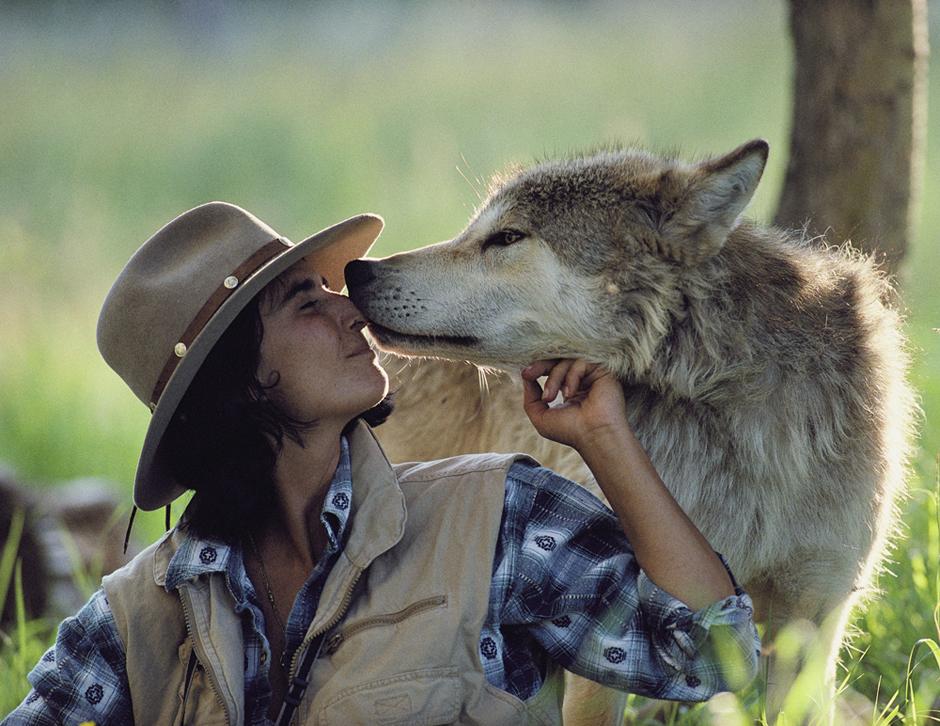 Wolf_nuzzling_Jamie_19.jpg