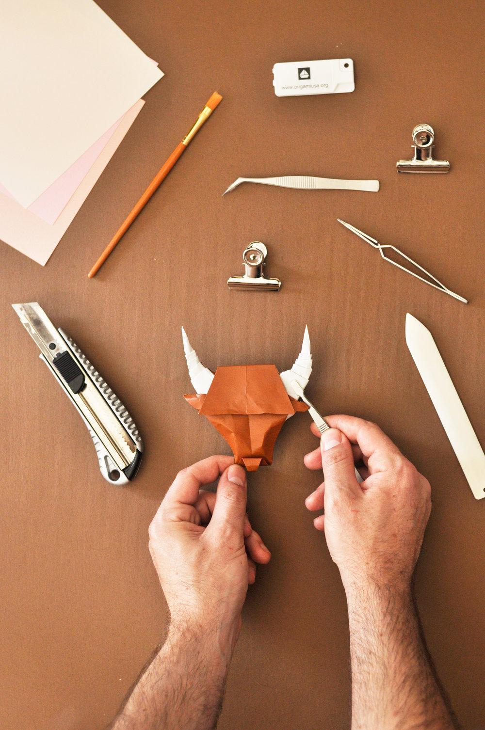 ross-symons-process-bulls-head