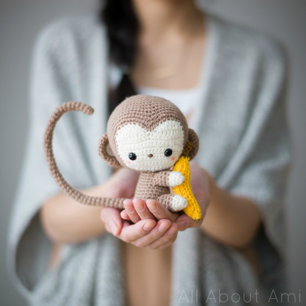 All About Ami Monkey