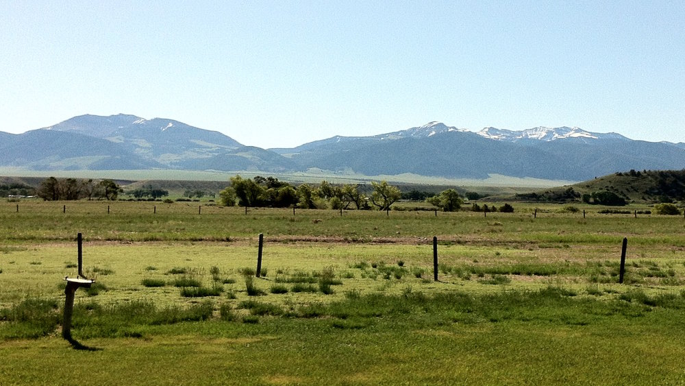 Backyard View of Madison Range.JPG