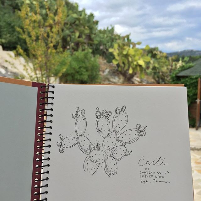 Gloomy skies and a sick baby-cakes has me thinking back to that time I sketched  cacti from real life plant models in Eze, France, whilst overlooking the Mediterranean. That was nice. But for now, I'll take painting under a bright chandelier after she's in bed, snoring soundly away. We'll see spring (and even summer) together, soon. That will be nice, too. ✨