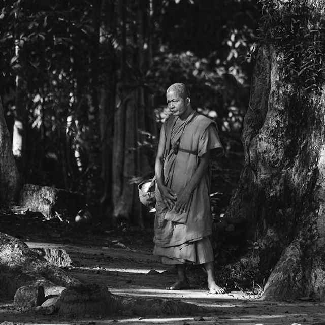 Monk standing in the light