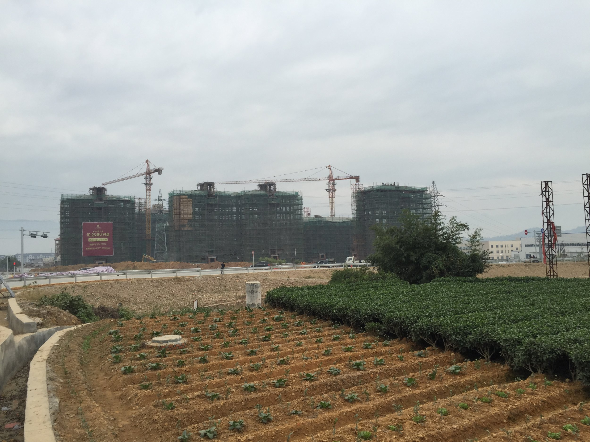 New apartments rise in the fields of Songyang County