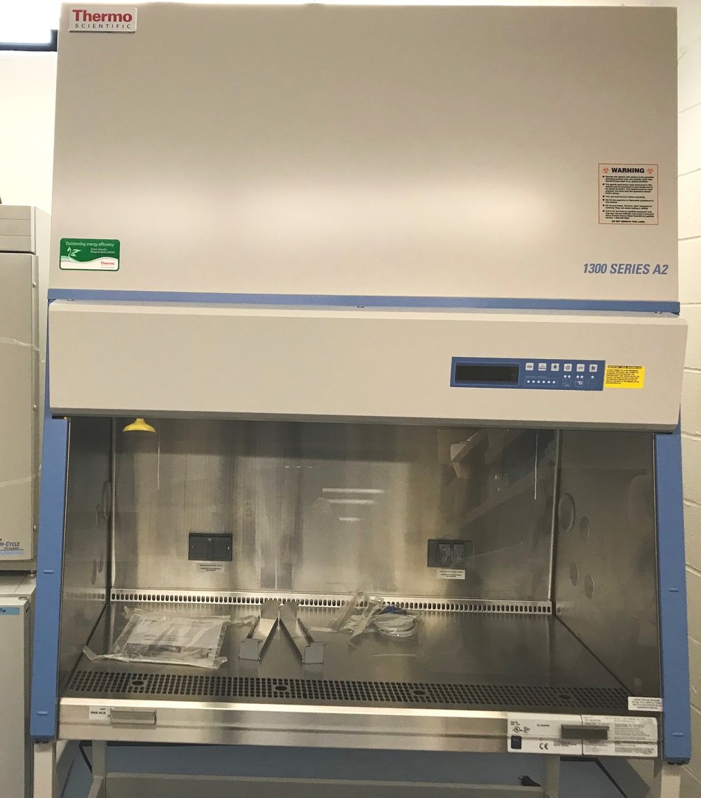 Thermo Scientific 1300 Series A2 Biosafety Hood Level 2 -