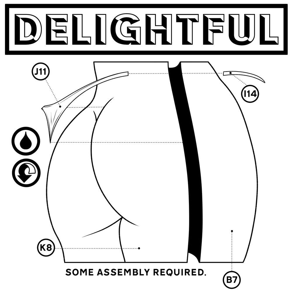 delightfulinstructions.jpg