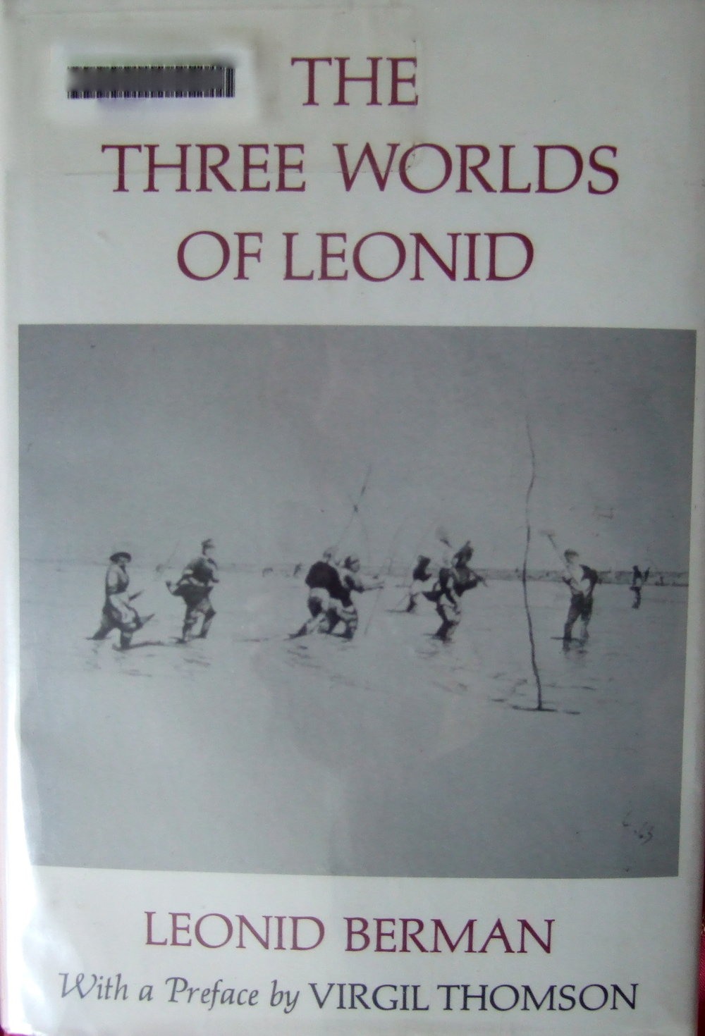 Three worlds of Leonid