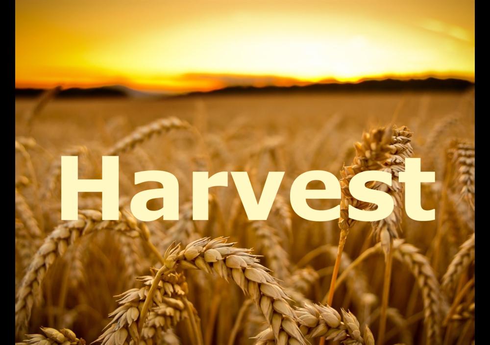 Harvest 2016 Logo.png