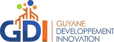 logo GDI.png