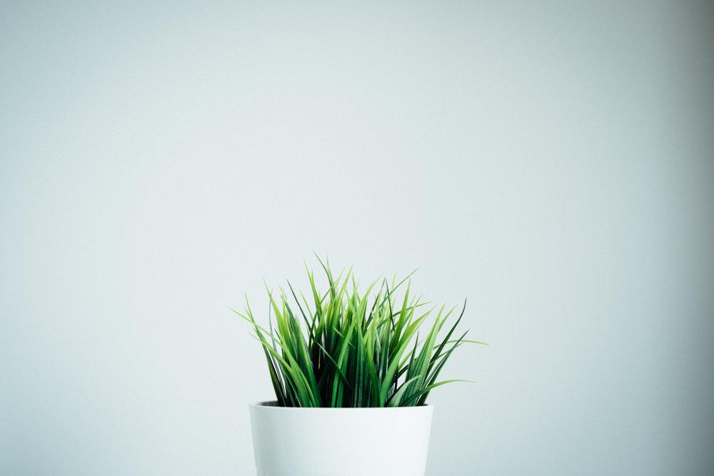 Startups / PME Innovantes - Booster votre business