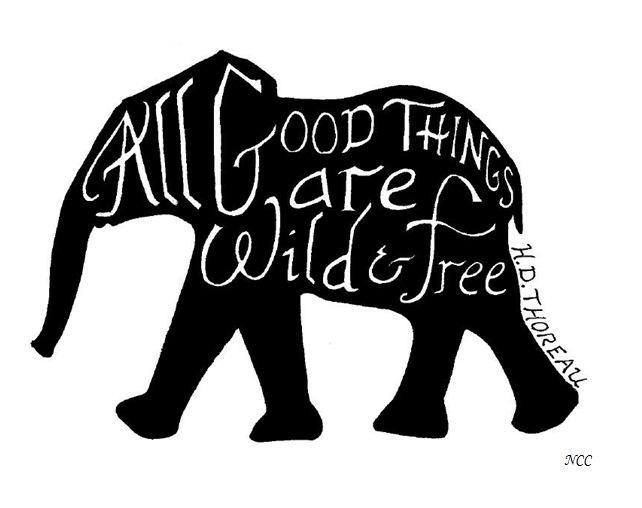 cbabc70bb1dadf92e1fd366fafb5cebb--elephant-quotes-elephant-art.jpg