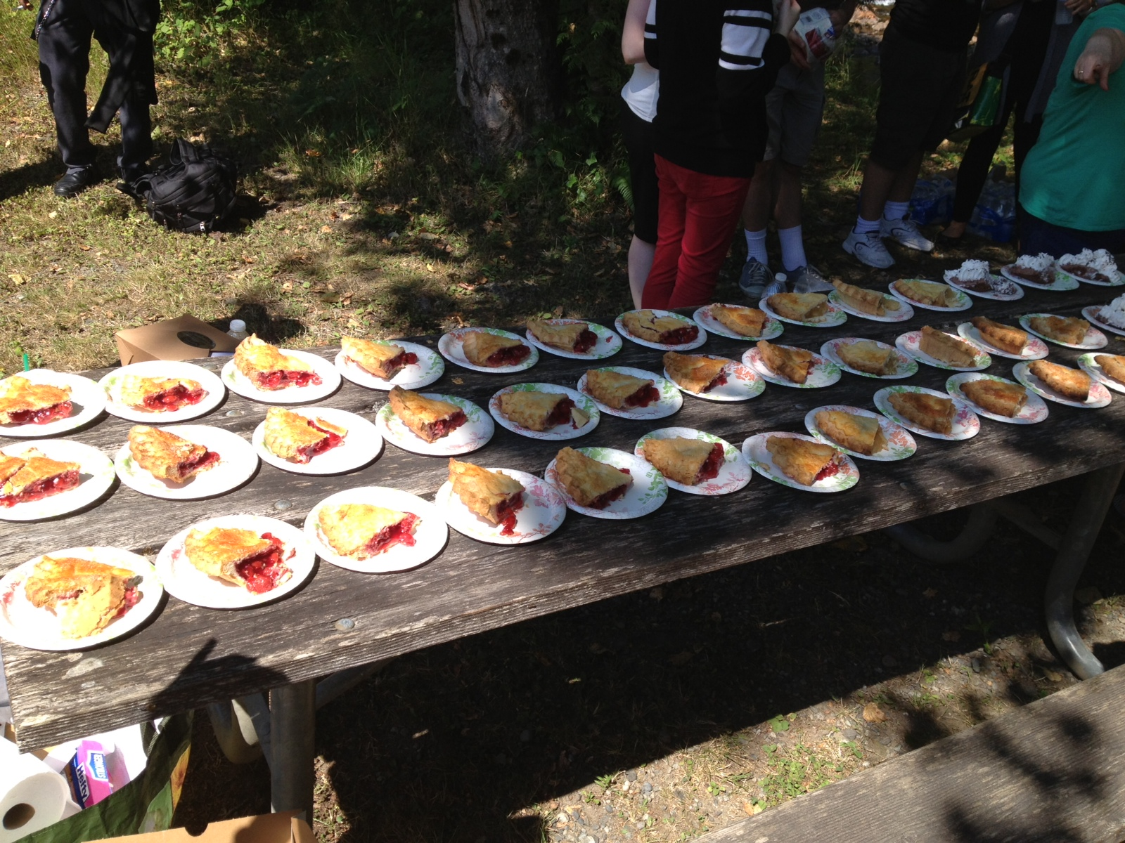 Lodes of cherry pie from Twede's at the farewell picnic.