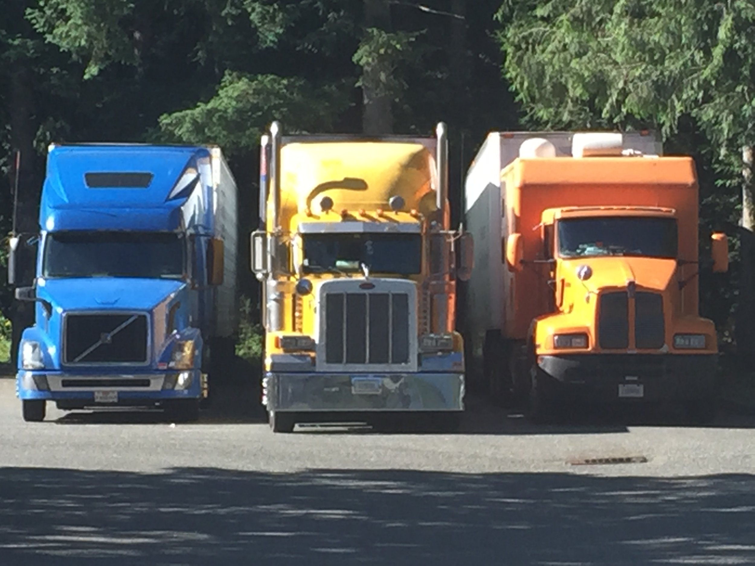 A real-life canvas of trucks at the Edgewick just like that picture wall in Snoqualmie.