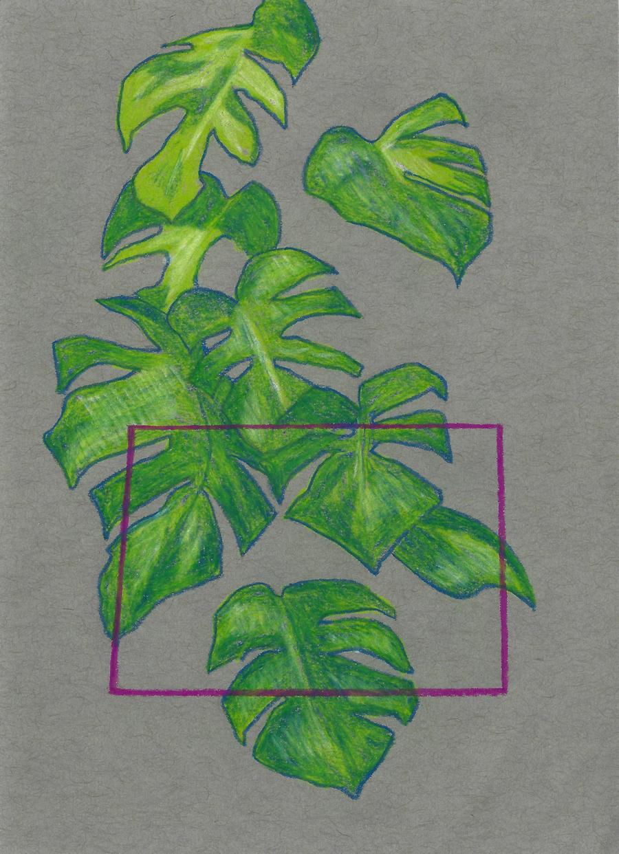 Plant_cropped_web.jpg
