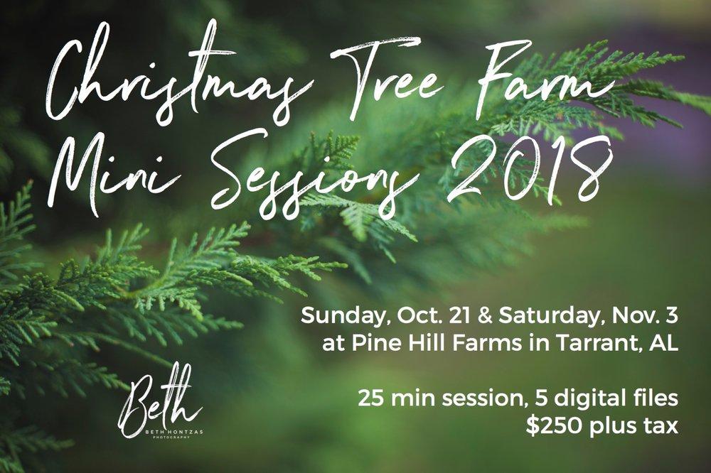 Christmas Tree Farm Minis 2018 copy (4).jpg