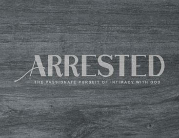 arrestedGraphicLook_forWebsite.jpg
