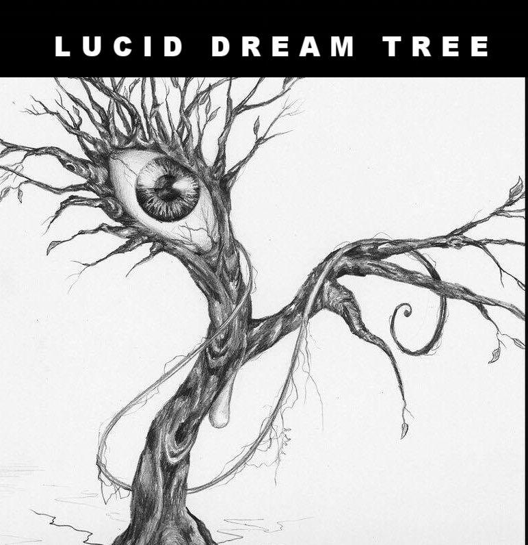 LUCID DREAM TREE