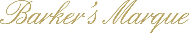ivi-bmw-logo.png