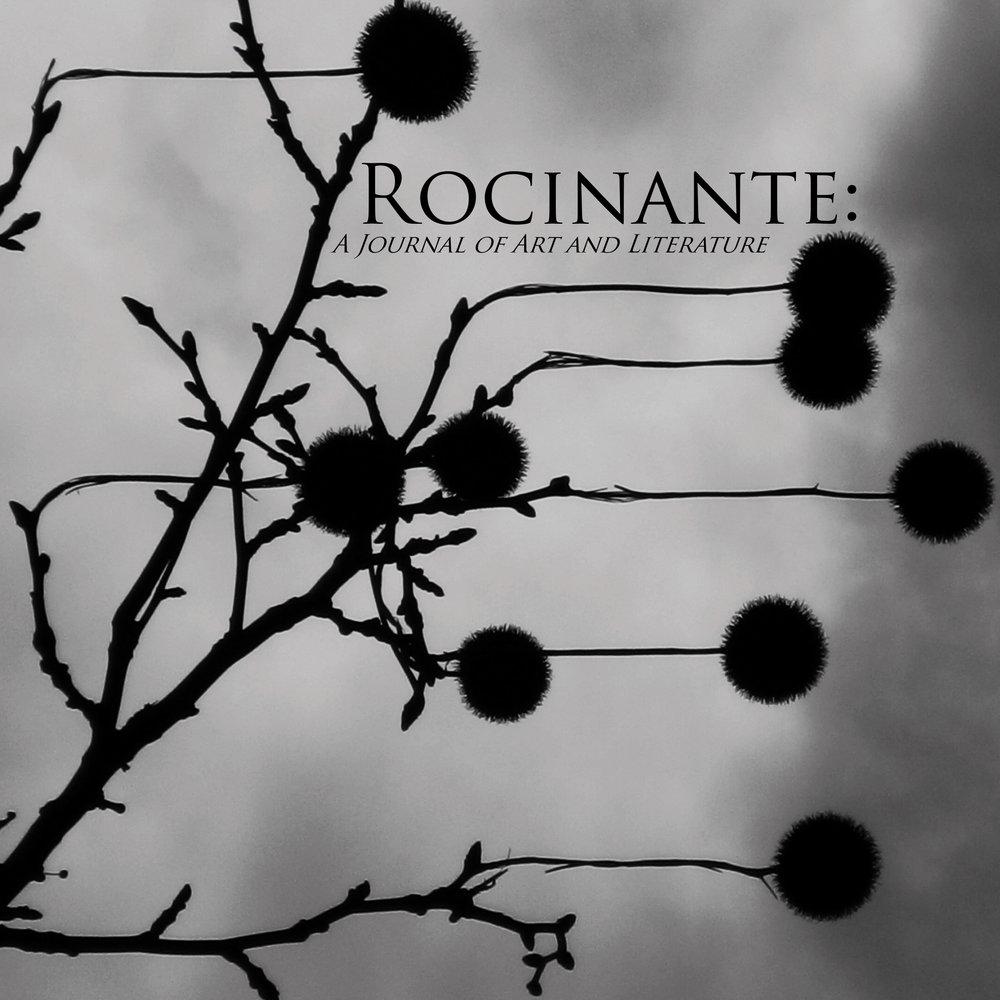 cover rocinante.jpg