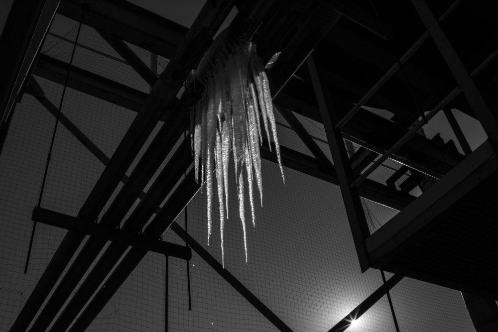 icey9.jpg