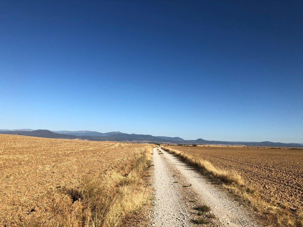 Stones and farm tracks.
